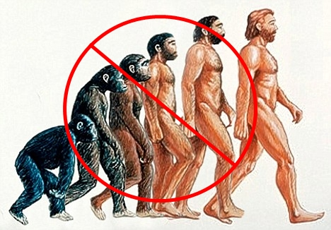 No-Evolution