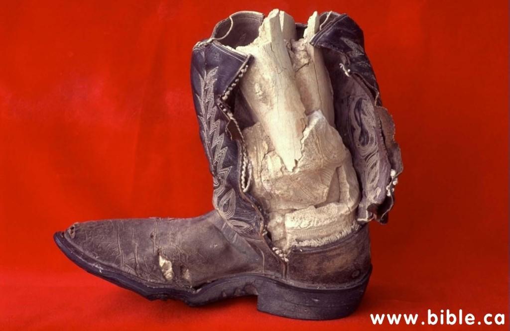 limestone-cowboy-boot-inside